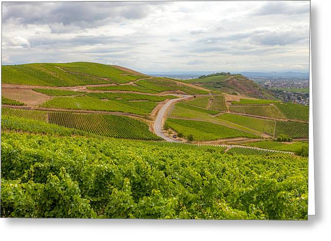 Alsatian Vineyards Greeting Card