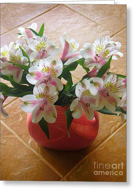 Alstroemerias In The Light Of Day Greeting Card by Lucyna A M Green