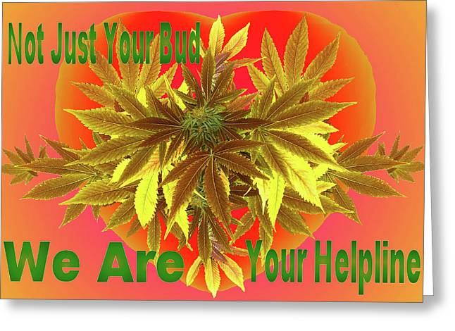 Alternative Medicine Greeting Card by Mike Breau