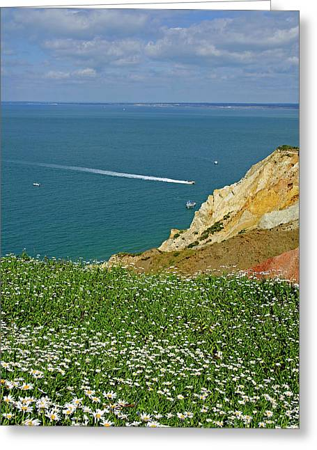 Coastal Greeting Cards - Alum Bay from West High Down Greeting Card by Rod Johnson