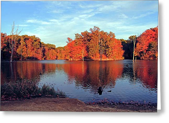 Alum Creek Landscape Greeting Card