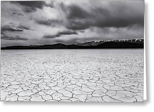 Greeting Card featuring the photograph Alvord Desert by Cat Connor