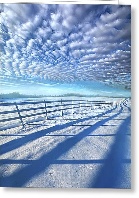 Greeting Card featuring the photograph Always Whiter On The Other Side Of The Fence by Phil Koch