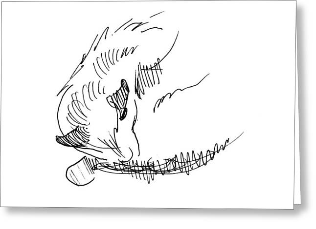 Greeting Card featuring the drawing Am I Am by Keith A Link