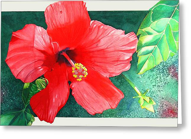 Amapola Greeting Card by Ada Astacio