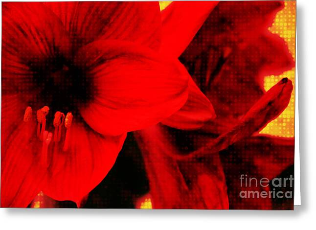 Liebe Greeting Cards - Amaryllis Abstrakt Greeting Card by Angela Doelling AD DESIGN Photo and PhotoArt