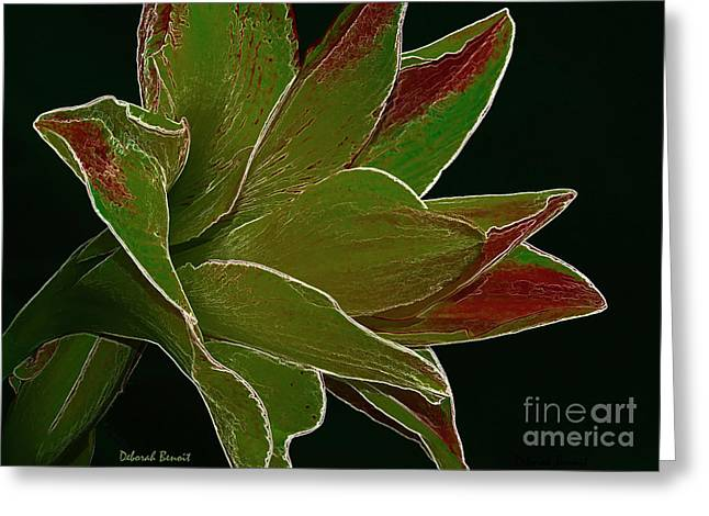Amaryllis Art Greeting Card