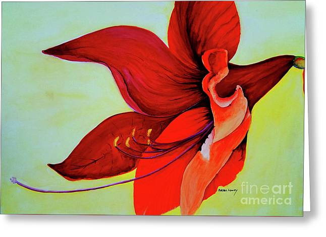 Amaryllis Blossom Greeting Card