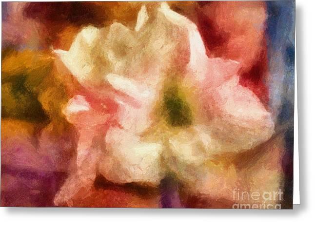 Amaryllis Colori Greeting Card by Lutz Baar
