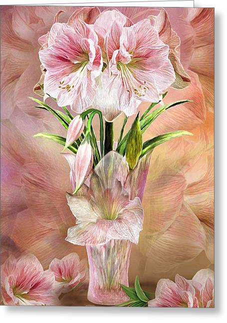 Amaryllis In Amaryllis Vase Greeting Card