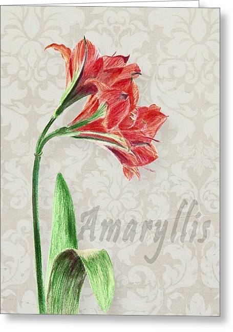 Amaryllis On The Ornament Greeting Card