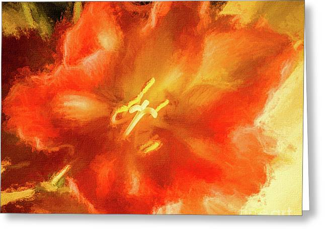 Amaryllis Orange Yellow Red Greeting Card
