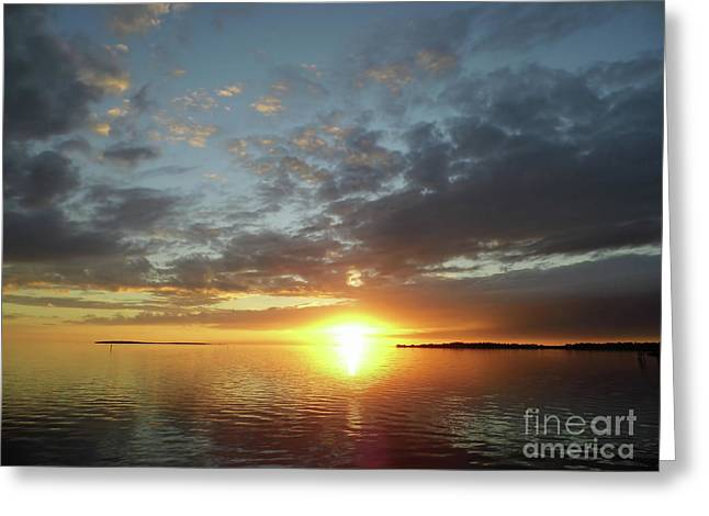 Amazing Cedar Key Sunset Greeting Card by D Hackett