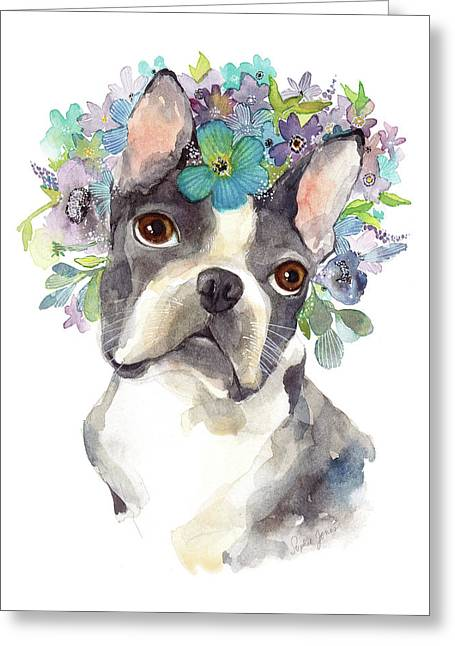 Amazing Gracie Greeting Card by Stephie Jones