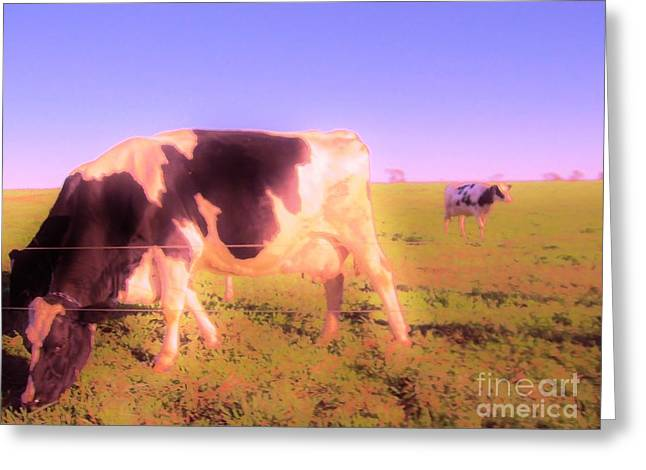 Greeting Card featuring the photograph Amazing Graze by Susan Carella