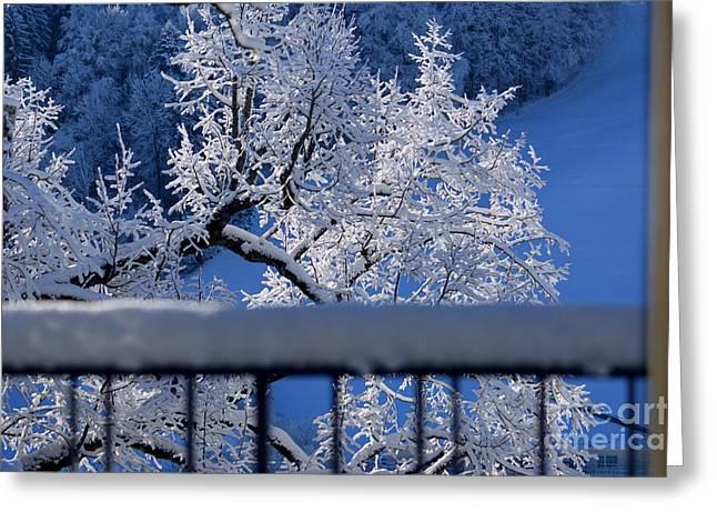 Greeting Card featuring the photograph Amazing - Winterwonderland In Switzerland by Susanne Van Hulst