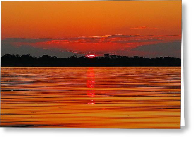 Amazon Gold Greeting Card by Blair Wainman