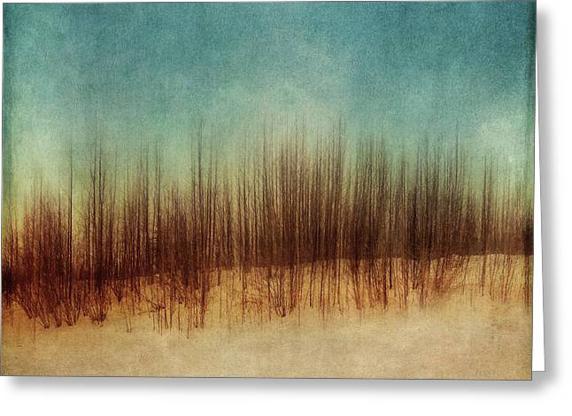Amber And Blues Greeting Card by Priska Wettstein