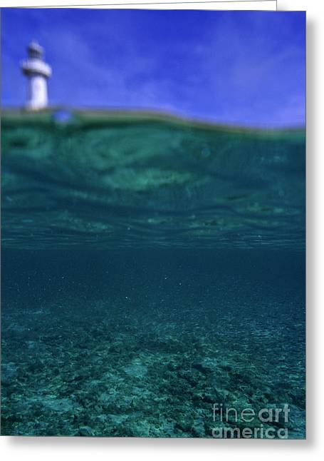Amedee Lighthouse Island Seen From Underwater Greeting Card by Sami Sarkis