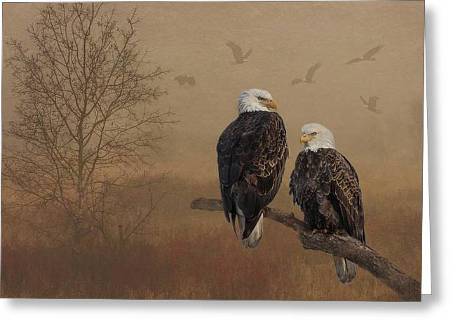 American Bald Eagle Family Greeting Card