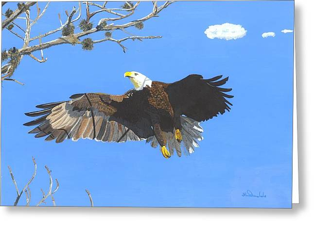 American Bald Eagle Greeting Card by William Demboski