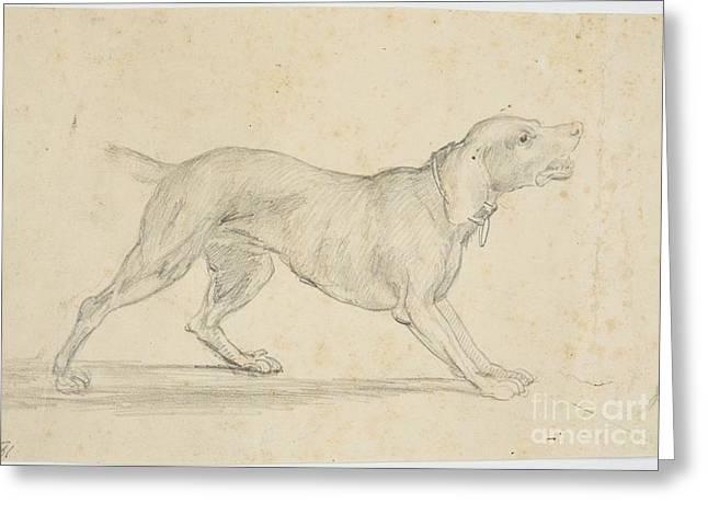 American Barking Dog In Profile Greeting Card