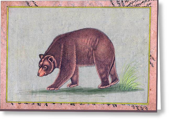 American Black Bear India Vintage Miniature Painting Watercolor Artwork Greeting Card by B K Mitra