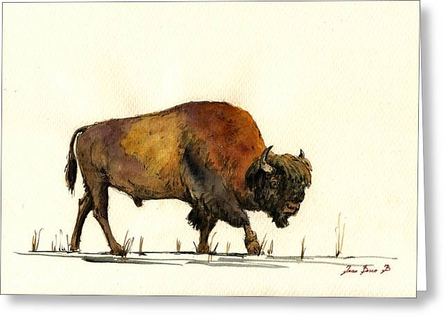 American Buffalo Watercolor Greeting Card