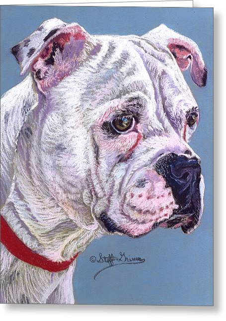Rescue Pastels Greeting Cards - American Bulldog Greeting Card by Stephanie Grimes