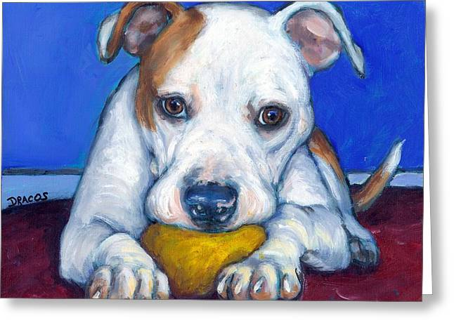 Bully Paintings Greeting Cards - American Bulldog with Yellow Ball Greeting Card by Dottie Dracos