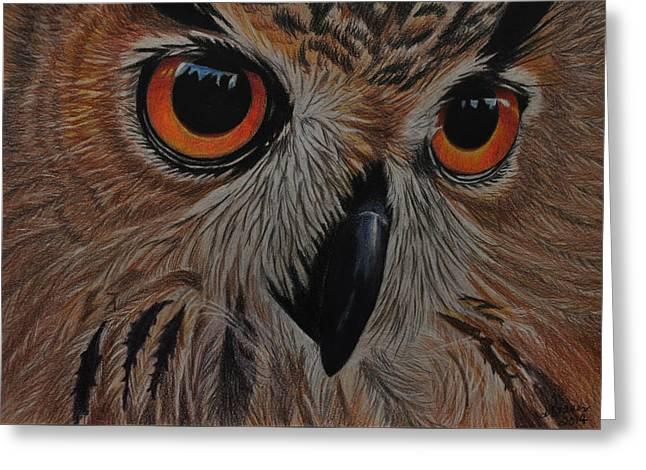 American Eagle Owl Greeting Card