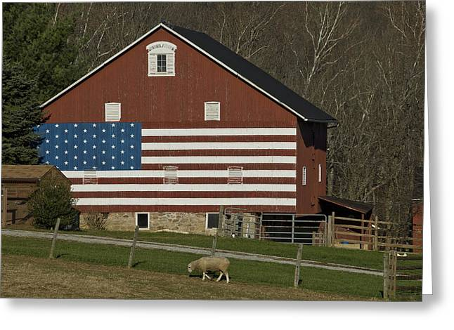 American Flag Painted On The Side Greeting Card by Todd Gipstein
