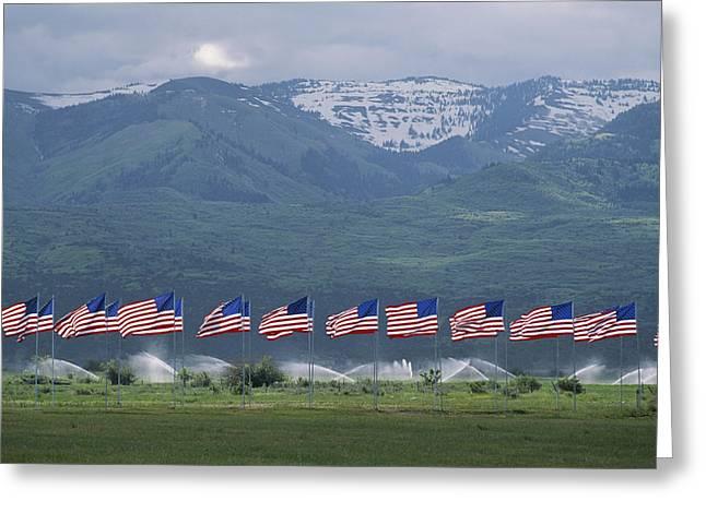 American Flags Honoring Veterans Greeting Card by James P. Blair