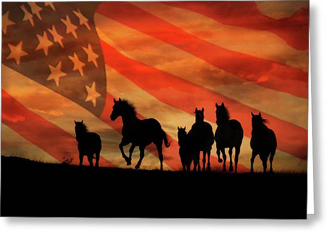 American Mustangs Greeting Card by Stephanie Laird