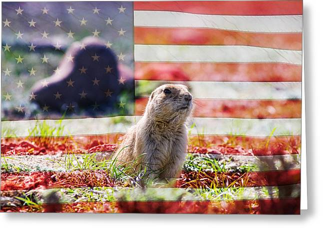 American Prairie Dog Greeting Card by James BO  Insogna