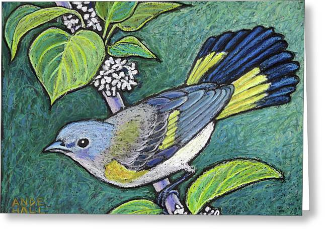 American Redstart Female Greeting Card