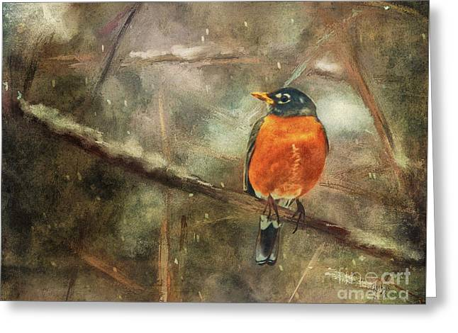 American Robin In The Snow Greeting Card