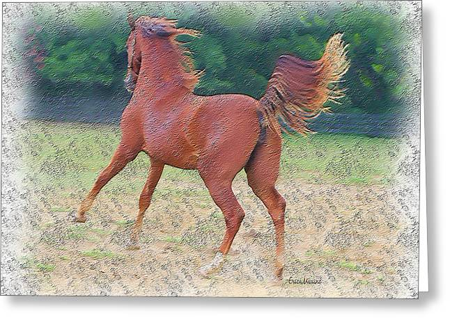 American Saddlebred Filly Greeting Card by EricaMaxine  Price