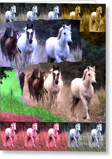 American Wild Horse Mustang On Posters Canvas Pillows Curtains Duvetcovers Phone Cases Tshirts Jerse Greeting Card