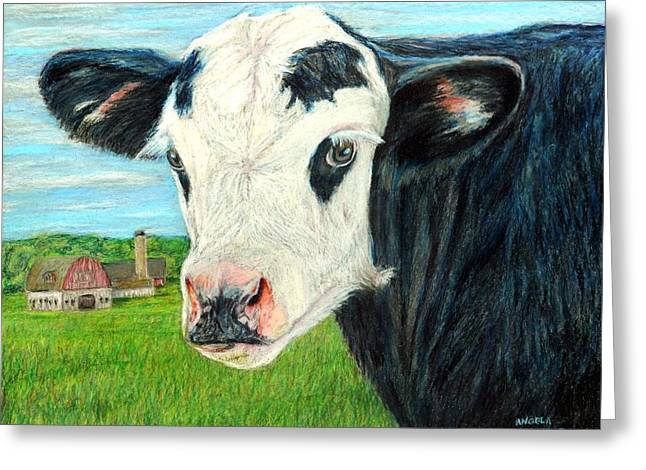 Americana Calf Greeting Card by Angela Finney