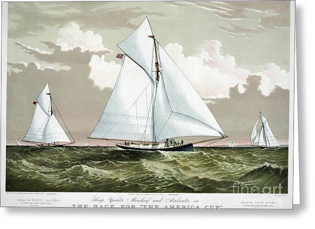 Americas Cup, 1881 Greeting Card by Granger