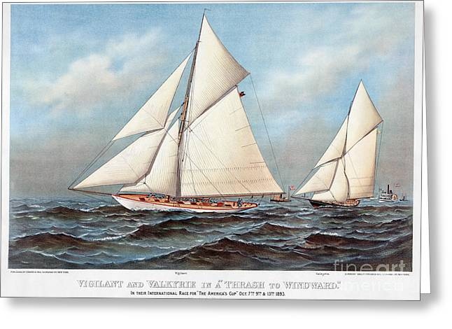 Americas Cup, 1883 Greeting Card by Granger