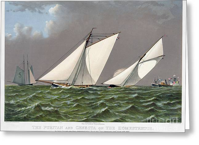Americas Cup, 1885 Greeting Card by Granger