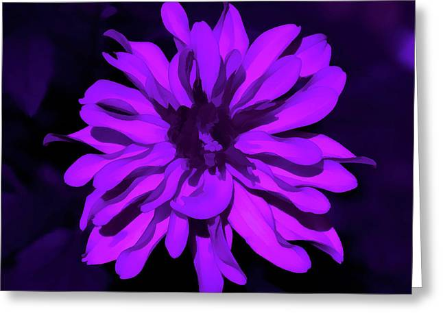 Amethyst Godess Greeting Card by Aimee L Maher Photography and Art Visit ALMGallerydotcom