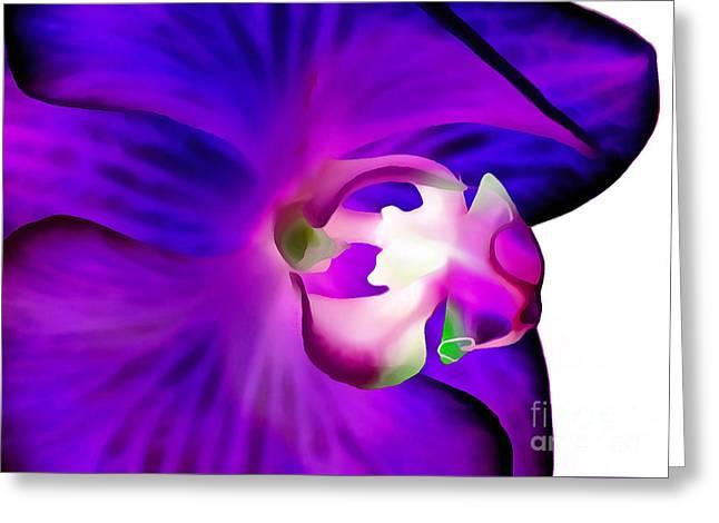 Amethyst Orchid Greeting Card by Krissy Katsimbras