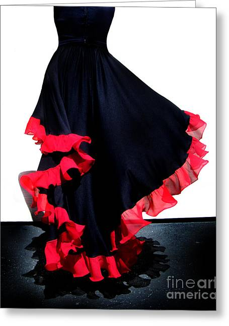 Ameynra Fashion Skirt. Mix Of Gothic And Spanish Dance Style Greeting Card by Sofia Metal Queen