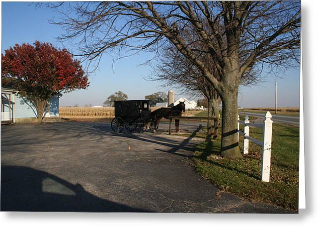 Amish Community Greeting Cards - Amish 4 Greeting Card by Eric Irion