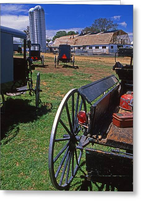 Amish Buggies Barnraising Greeting Card