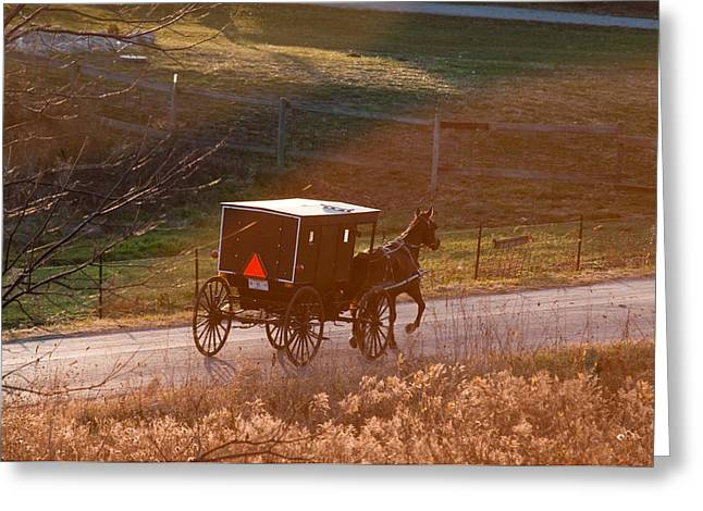 Amish Buggy Afternoon Sun Greeting Card