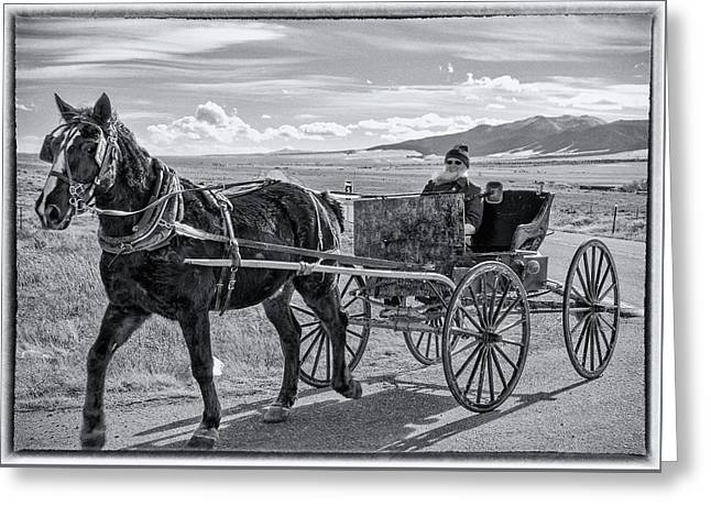 Amish Buggy Driver Greeting Card by John Bartelt